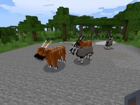 бонго и антилопы