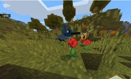 колибри собирает пыльцу
